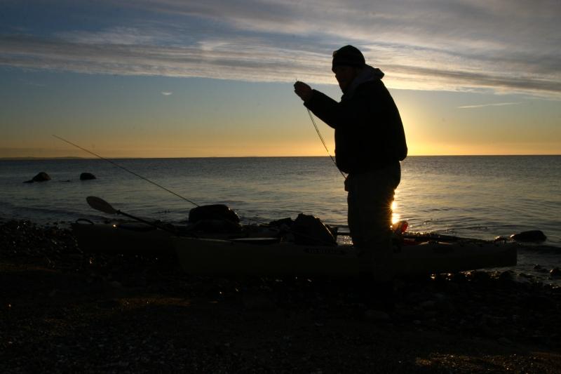 Gleich beginnt die Fischerei auf Meerforellen an Dänemarks Küste