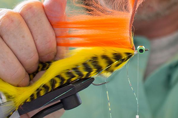 Nun kann der Fin Racoon Zonker in einer beliebigen Farbe eingebunden werden. Auch hier ist es wichtig, dass Racoon Haare bei jeder Wicklung zum Hakenbogen gestrichen werden. Der Zonker Strip wird dann mit Wicklungen zu den Augen geführt. Dadurch entsteht ein schöner, buschiger Kopf.