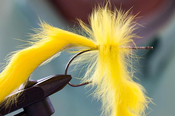 Anschließend wir ein Zonker Strip (extra breit) als Körper eingebunden und als Rippung nach vorne geführt. Wichtig: nach jeder Wicklung die Haare nach hinten zum Hakenbogen streichen.
