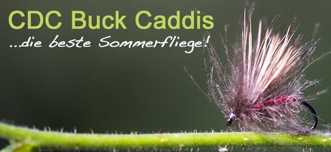 cdc_buck_caddis_bericht