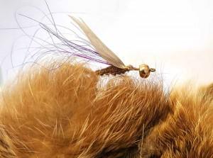 Nun werden wieder aus der Hasenmaske lange, etwas dickere Fasern ausgerupft. Damit soll ein dicker Thoraxbereich gefortm werden.